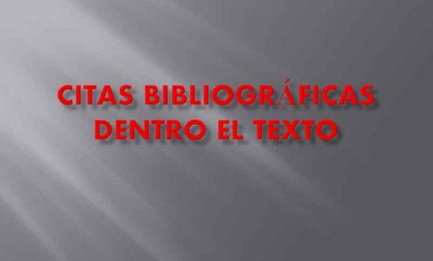 Citas Bibliográficas Dentro el Texto